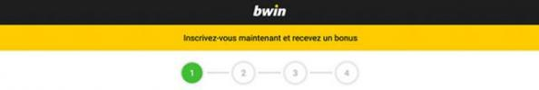 Bwin Suisse banner